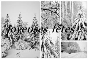 joyeuses-ftes-de-fin-dannee-a-tous-mes-amies-photographes-4597dc64-d97f-4db3-a3d7-c689024aa95c